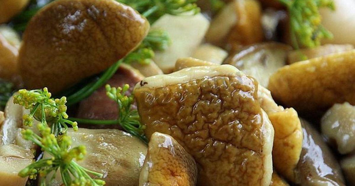 россии вышла грибы на зиму рецепты с фото пошагово название